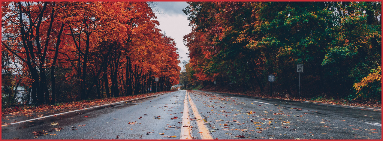 Autumn driving advice from Kirby's Auto Centre